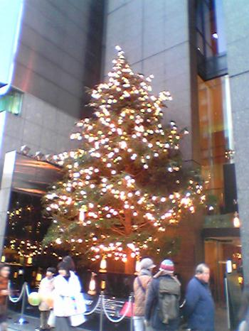images/Tree
